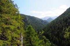 Le montagne abbelliscono con la foresta e l'albero verdi in priorità alta, fondo Cielo blu sopra terra Fotografie Stock Libere da Diritti