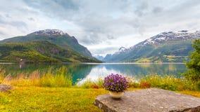 Le montagne abbelliscono, fiordo e posto di resto, Norvegia Immagine Stock
