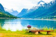 Le montagne abbelliscono, fiordo e posto di resto, Norvegia Fotografia Stock