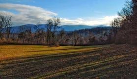 Le montagne appalachiane Immagine Stock