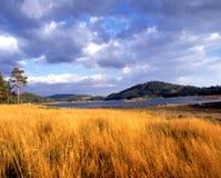 Le montagne - Bulgaria - Europa fotografie stock
