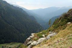 Le montagne carpatiche Fotografie Stock