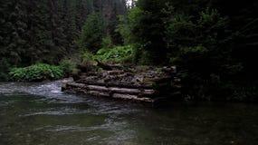 Le montagne carpatiche Fotografia Stock Libera da Diritti