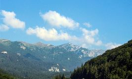 Le montagne carpatiche dalla Romania Immagine Stock