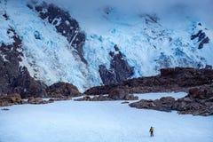 Le montagne dell'inverno abbelliscono con la viandante sola, Nuova Zelanda Immagini Stock Libere da Diritti