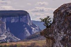 Le montagne della Crimea Immagini Stock