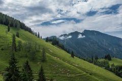 Le montagne delle alpi in Baviera, Germania Fotografia Stock