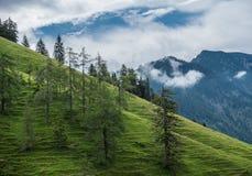 Le montagne delle alpi in Baviera, Germania Immagini Stock Libere da Diritti