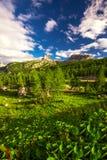 Le montagne delle dolomia da Pordoi passano la strada della montagna, Italia Immagine Stock Libera da Diritti