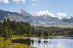 Le montagne di Altai Fotografia Stock
