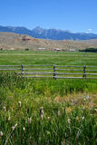 Le montagne di Beaverhead si avvicinano al salmone, Idaho Fotografie Stock