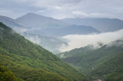 Le montagne di Caucaso verdi abbelliscono nella sera, sfondo naturale Fotografia Stock Libera da Diritti