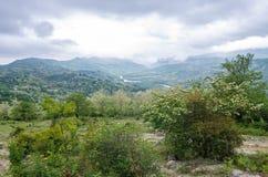 Le montagne di Caucaso verdi abbelliscono nella sera, sfondo naturale Fotografia Stock