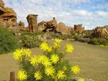 Le montagne di Cederberg, Sudafrica fotografia stock