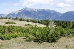 Le montagne di Rax Alp con Schneeberg Fotografie Stock Libere da Diritti