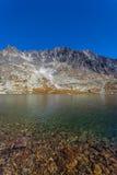 Le montagne di Tatra Immagine Stock