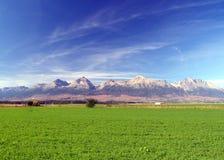 Le montagne di Tatra & il campo verde Immagine Stock Libera da Diritti