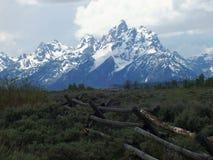 Le montagne di Teton vicino a Jackson Hole Wyoming fotografia stock