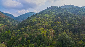 Le montagne e le foreste naturali sono abbondanti Fotografia Stock