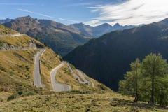 Le montagne, i picchi e gli alberi abbelliscono, ambiente naturale Alta strada alpina di Timmelsjoch Immagini Stock