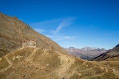Le montagne, i picchi e gli alberi abbelliscono, ambiente naturale Alta strada alpina di Timmelsjoch Immagine Stock