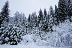 Le montagne innevate sui giorni di Natale fotografia stock