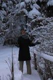 Le montagne nell'inverno carpathians Fotografia Stock