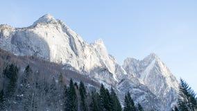 Le montagne pallide Immagine Stock