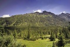 Le montagne polacche di Tatra si avvicinano a Zakopane Immagine Stock