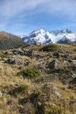 Le montagne ricoperte neve della Nuova Zelanda vicino montano il cuoco Fotografie Stock
