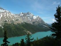 Le Montagne Rocciose - lago Peyto fotografia stock libera da diritti