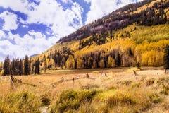 Le montagne variopinte di Colorado in autunno fotografia stock