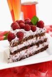 Le morceau de gâteau de crème de framboise et la framboise wine Photo stock