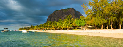 Le Morne Brabant at sunset. Panorama. White sandy beach and Le Morne Brabant at sunset. Mauritius. Panorama Stock Images