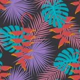 Le mostera exotique tropical de paume laisse à art accrochant de fleur de heliconia le modèle sans couture Image libre de droits