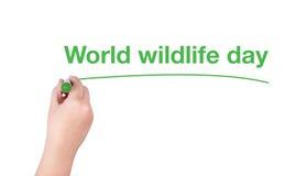 Le mot de jour de faune du monde écrivent sur le fond blanc Image libre de droits