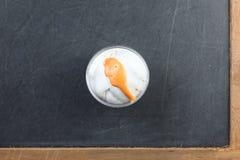 Le moule de la pâte de jeu en plastique ovale de forme contenant le repre d'unité Images stock