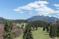 Le Mountain View avec des arbres aménagent en parc dans les Carpathiens Image stock