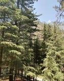 Le Mountain View photos libres de droits