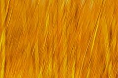 Le mouvement de résumé a brouillé le fond avec les lignes verticales dans les teintes jaunes photographie stock libre de droits