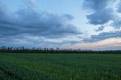 Le mouvement des nuages noirs au-dessus des champs du whea d'hiver Photographie stock libre de droits