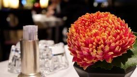 Le mouvement du thé chaud et la fleur sur le mouvement de table et de tache floue des personnes apprécient le repas à l'intérieur banque de vidéos