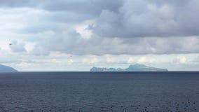 Le mouvement lent des mouettes communes volant sur le méditerranéen voient Îlede Capri banque de vidéos