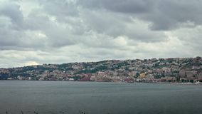 Le mouvement lent du vol commun de mouettes de groupe sur méditerranéen voient à Naples clips vidéos