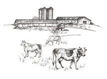 Le mucche pascono vicino all'azienda agricola Schizzo rustico di stile del paesaggio Retro illustrazione illustrazione vettoriale