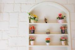 Le mur avec les fenêtres et la fleur Photo stock