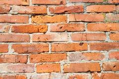 Le mur bricked avec les briques rouges, petits détails Images libres de droits