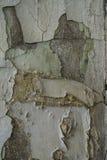 Le mur criqué du vieux bâtiment Image libre de droits