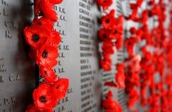 Le mur de pavot énumère les noms de tous les Australiens qui sont morts en service des armées Image libre de droits