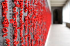 Le mur de pavot énumère les noms de tous les Australiens qui sont morts en service des armées Photographie stock libre de droits